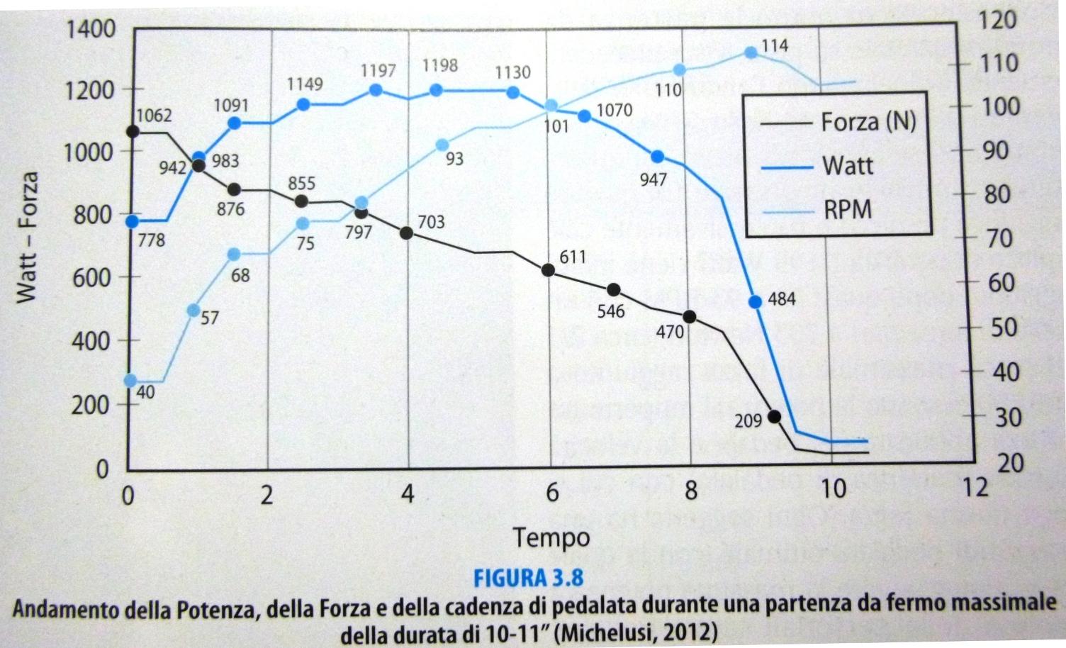 watt - forza